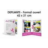 DEPLIANT 42 X 21 CM